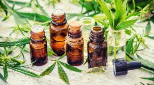 Hemp Oil vs Cannabis Oil