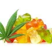 CBD Gummies vs CBD Oil